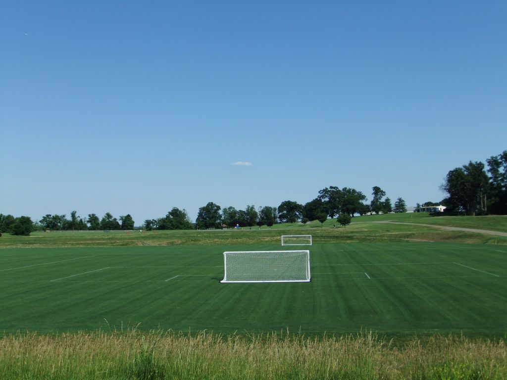 First Lined Field - May 2012